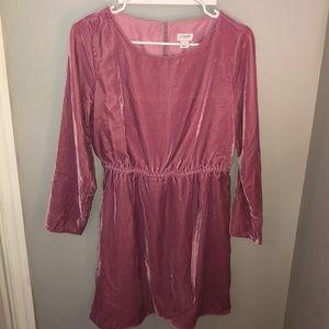 Pink Velvet J Crew Dress
